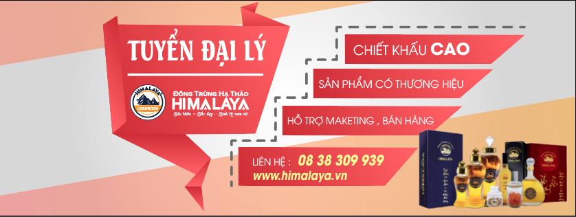 DAI LY HIMALAYA