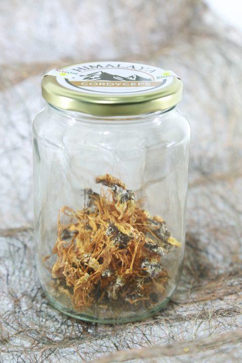 cách dùng đông trùng hạ thảo khô