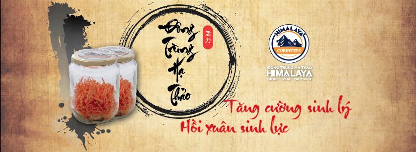 Dong Trung Ha Thao Viet Nam
