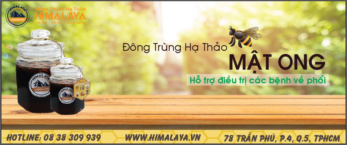dong trung ha thao ngam mat ong