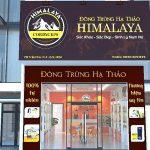 Cần Tuyển đại lý cấp 1 – Đông Trùng Hạ thảo Himalaya